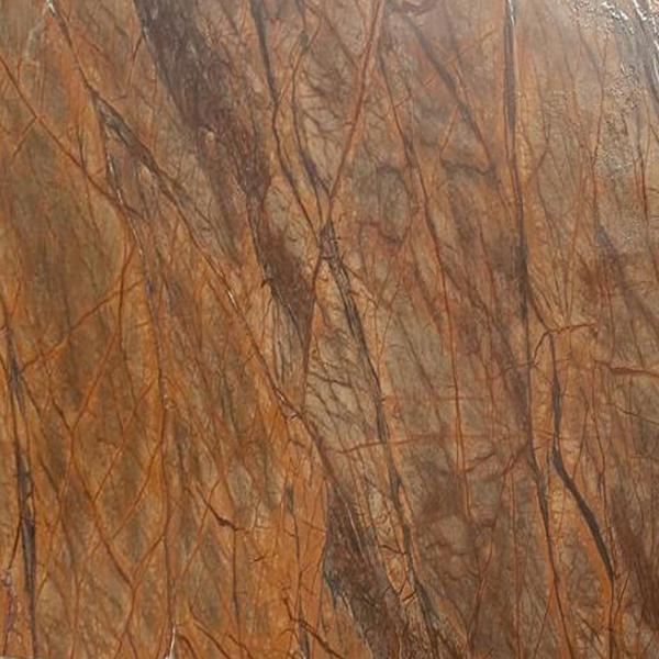 Rain Forest Brown